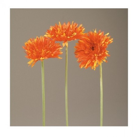 Gerbera Spider artificiel, Hauteur 59 cm orange