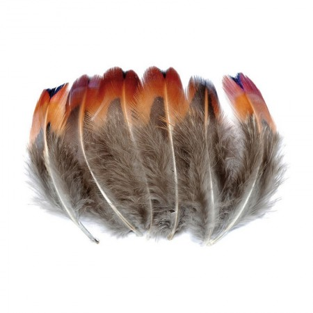 Bag 6 grams, feathers of guinea fowl, 72 feathers, 4 ~ 8 cm, for catching dreams and decoration