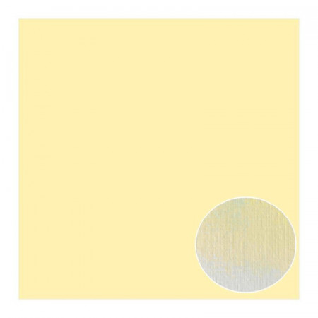 Lot of 8 sheets of Structured Linen Effect Scrapbook Paper, Beige, size 30.5 x 30.5 cm, 240g / m²